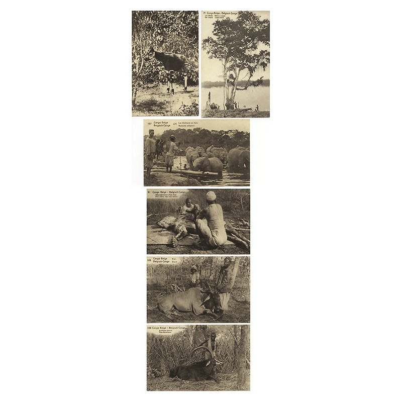 Congo Belge: 6 images in collotype (approx. 1922)
