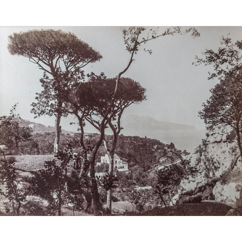 Giorgio SOMMER: Capri da Massa. Original photography. Albumen print (approx. 1885).