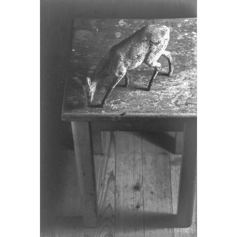"""Christ, Jürg: """"Ein Platz für wilde Tiere."""" Original-Fotografie (1994)."""