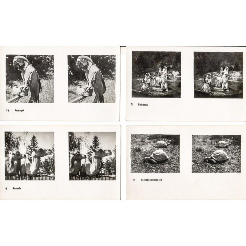 "Omina Verlag - Sterofotografien - ZOOBILDER. ""Aus dem Zoo"". 20 Bildpaare."