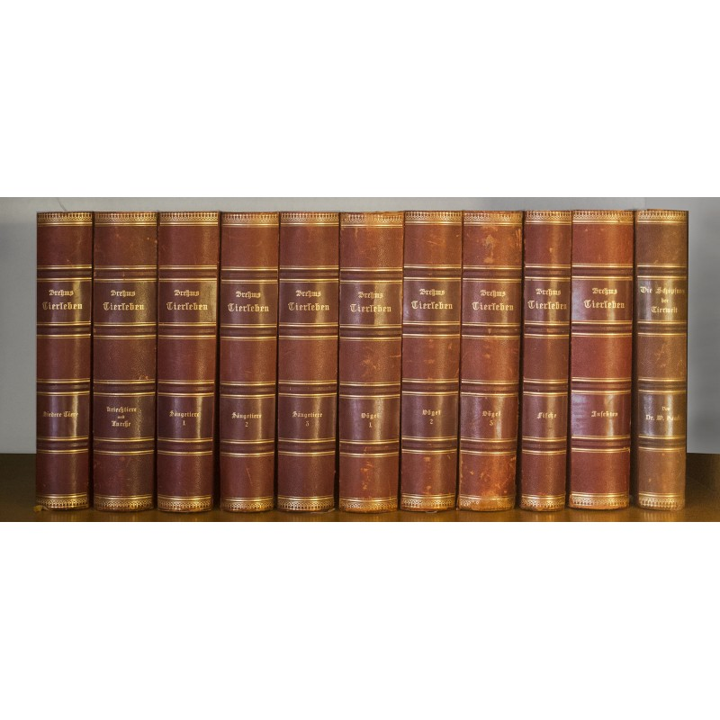 Mit 180 Chromlithografien -Brehms Tierleben. 10 + 1 Bände (1900)