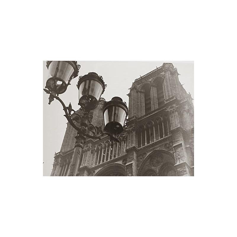 Else THALEMANN: Architektur (Paris. Notre Dame). Original-Fotografie (um 1930 - Abzug 1950er Jahre)