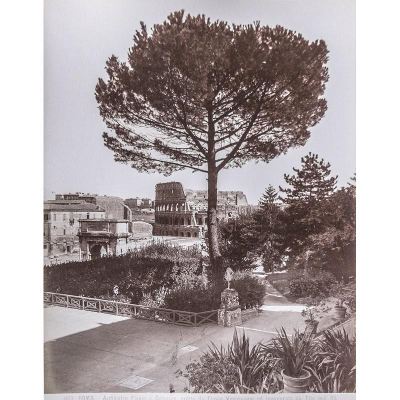 Anonymous: Roma. Anfiteatro Flavio o Collosseo eretto da Flavio Vespasiano. Albumen print (approx. 1880).